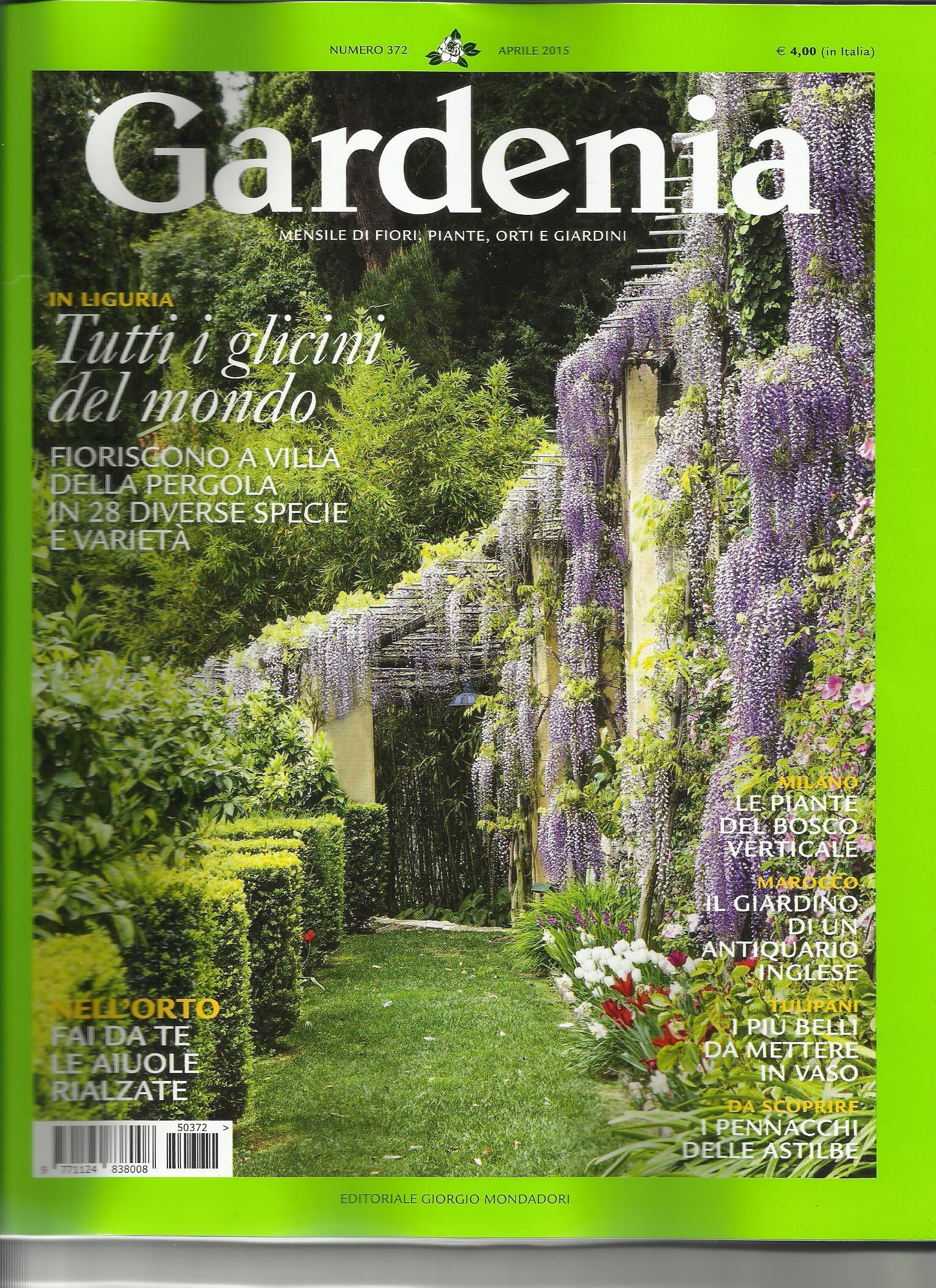 Gardenia 2
